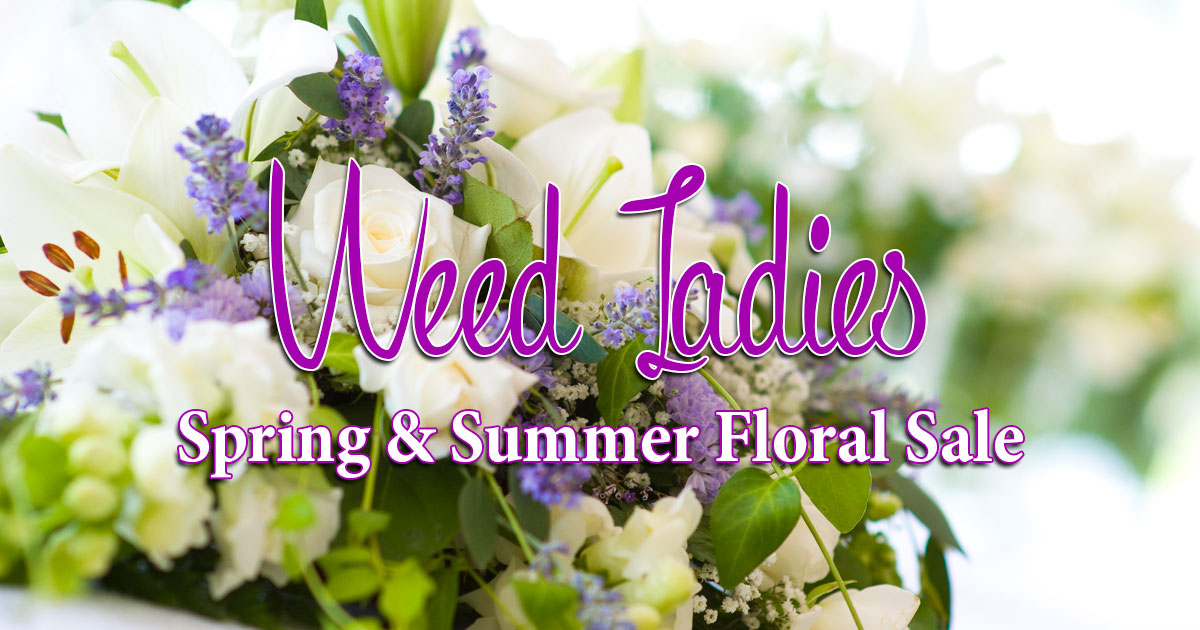 Weed Ladies Spring & Summer Floral Sale